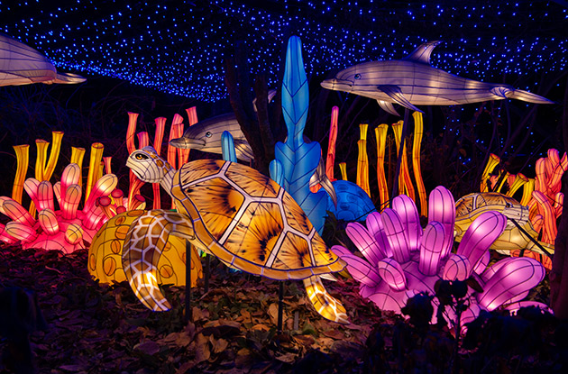 Holiday Lights Festival Returns to the Bronx Zoo Starting Nov. 20