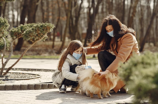 Dog Parks in and Around NYC