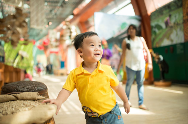 Kid-Friendly Museums in the New York Area
