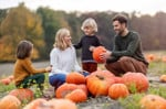 21 Places to Go Pumpkin Picking on Long Island Your Family Will Love