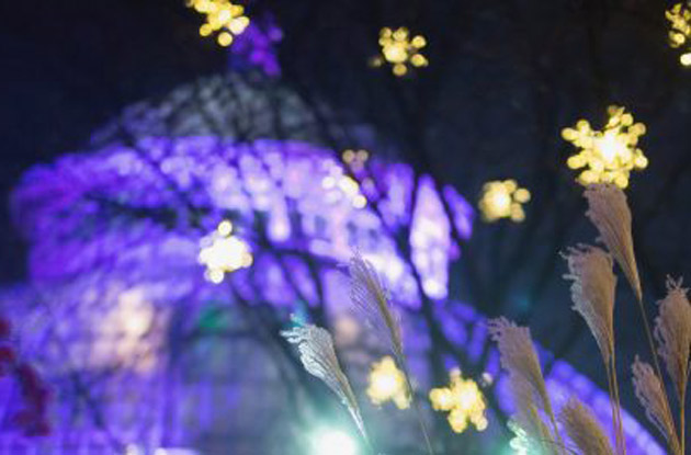 New York Botanical Garden Announces New Holiday Light Experience