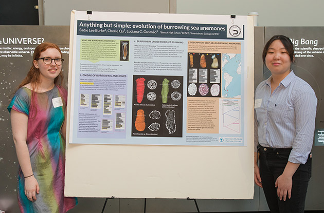 Two NYC Students Discover a New Species of Sea Anenomes