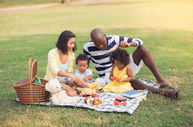 Best Picnic Spots for Families in NYC, Long Island, Westchester, Rockland, and Bergen