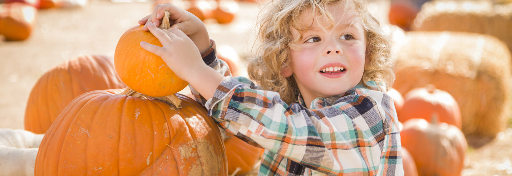The Top 10 Places to Go Pumpkin Picking in Rockland County, NY & Nearby