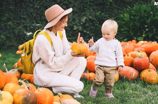11 Awesome Spots to Go Pumpkin Picking in Westchester County and Nearby