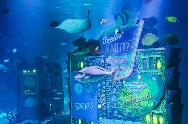 New Jersey SEA LIFE Aquarium to Open at American Dream on May 4