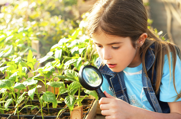 Earn Girl Scouts Badges From Home with Free Activities in STEM, Creative Arts, and More