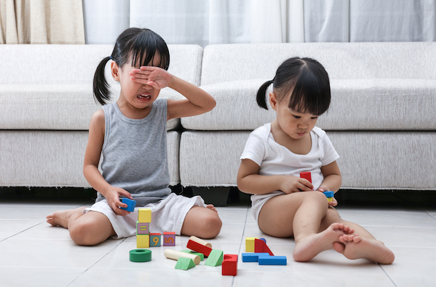 What Are the Best Ways to Manage Sibling Rivalry?