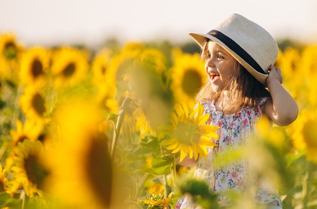 These Are the Top 5 Sunflower Mazes Near Rockland County