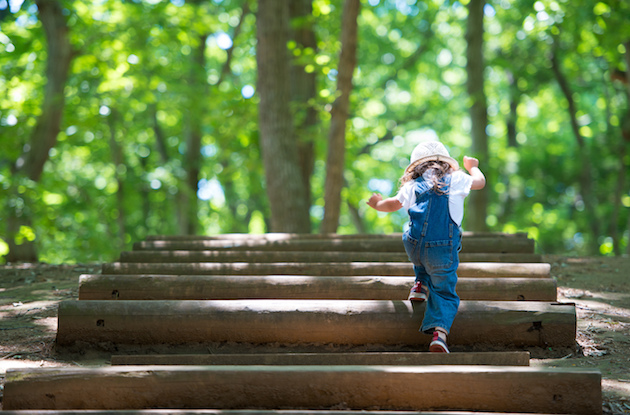 Tips for Choosing a Toddler Summer Camp