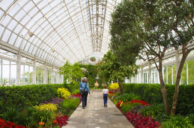 How to Spend the Day at New York Botanical Garden with Your Kids