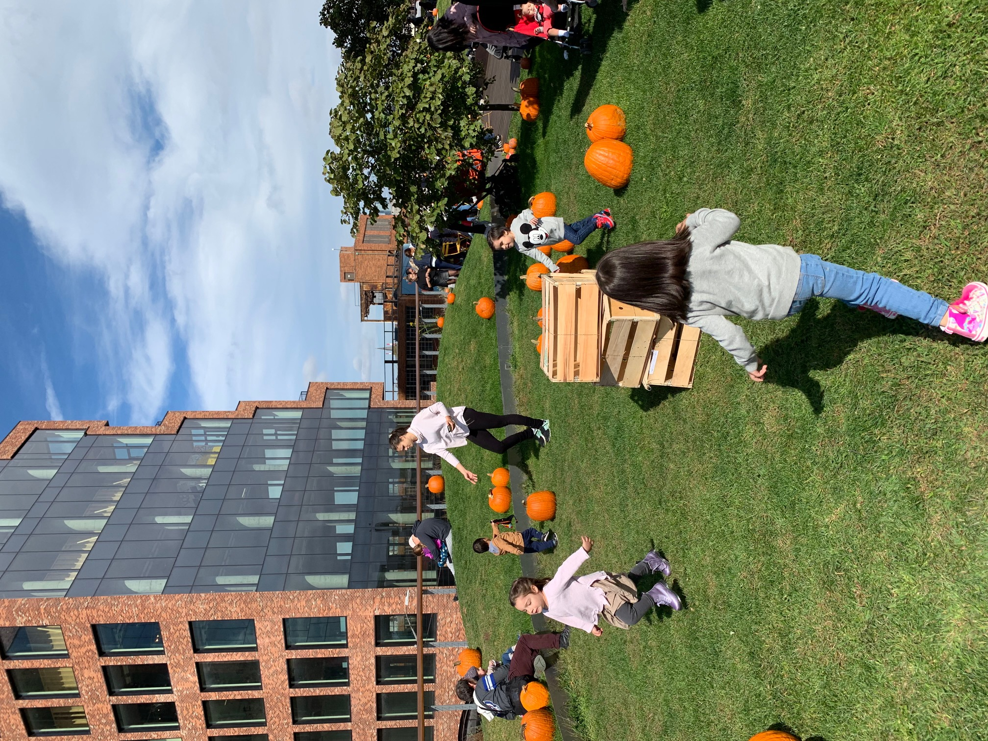 IN PERSON Pumpkin Patch at Vale Park at The William Vale