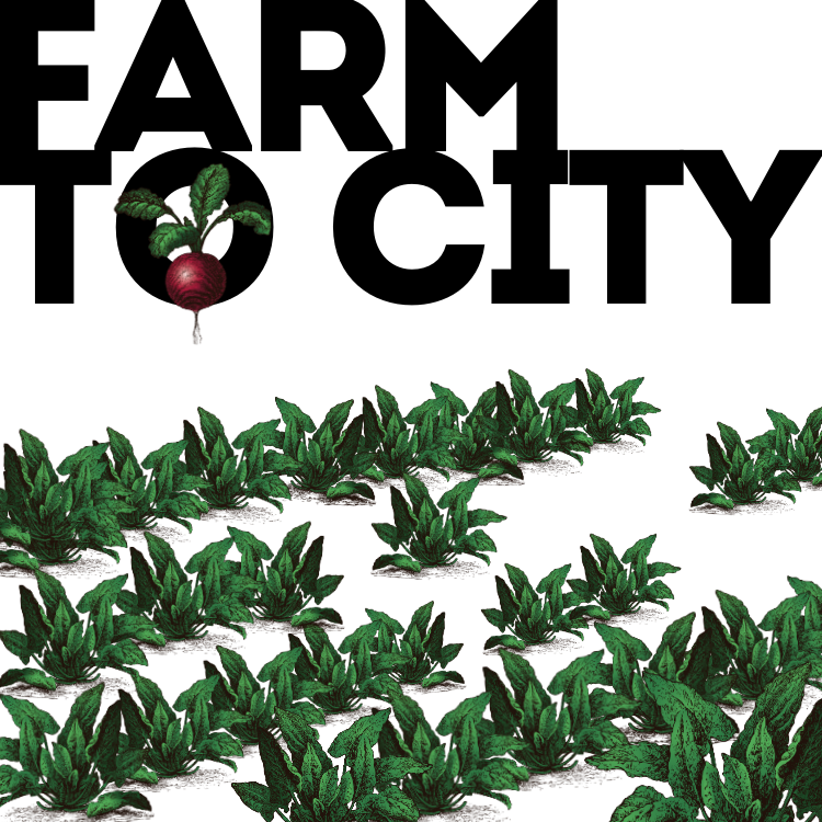Farm to City with New York Public Library's Culture Pass Program at Dyckman Farmhouse Museum