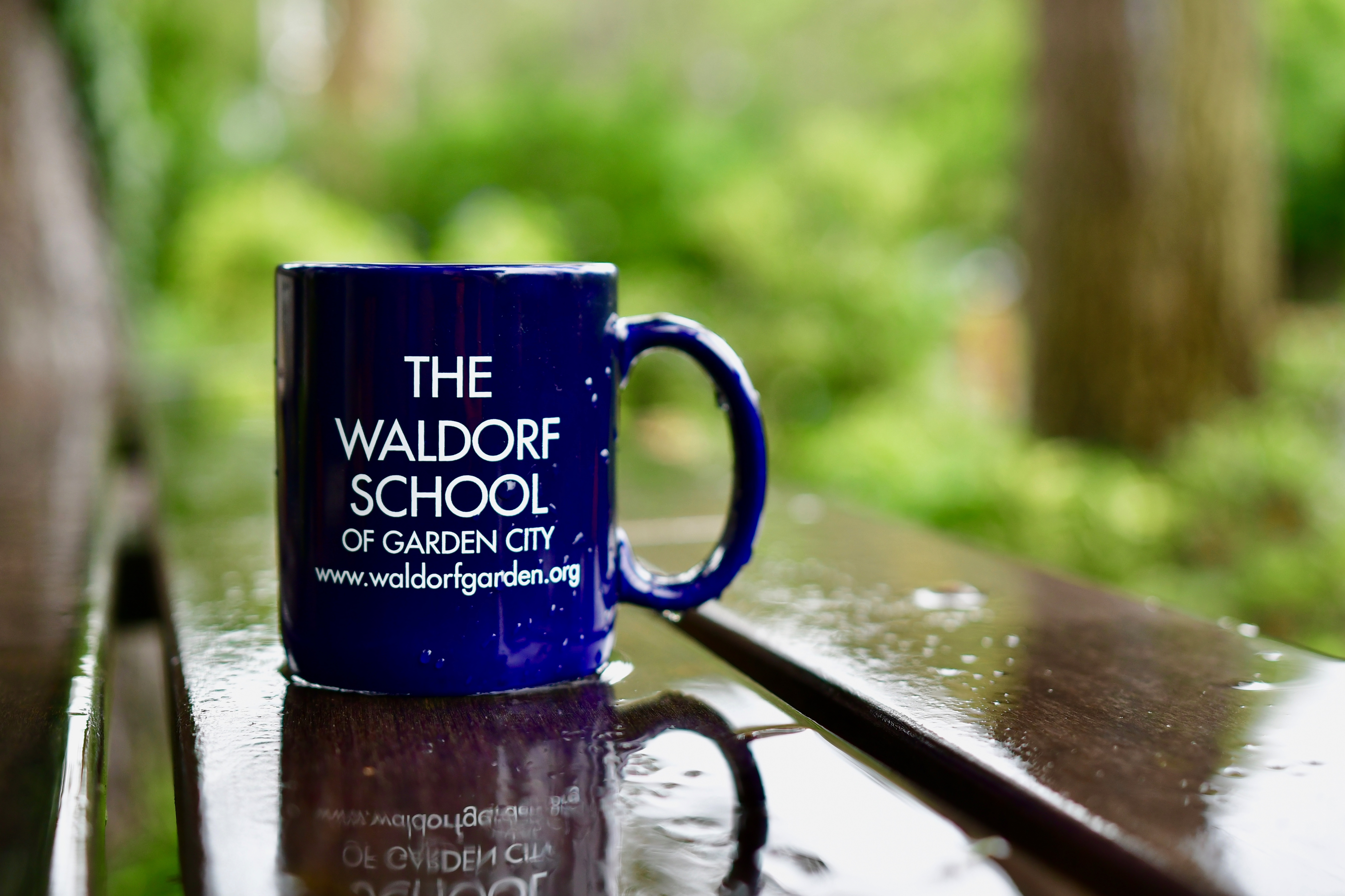 ONLINE Virtual Open House! at The Waldorf School of Garden City