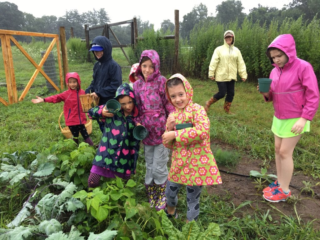 Junior Farmers' Camp Open House at Cropsey Community Farm
