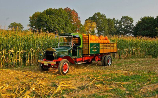 Public Hayrides at Secor Farms