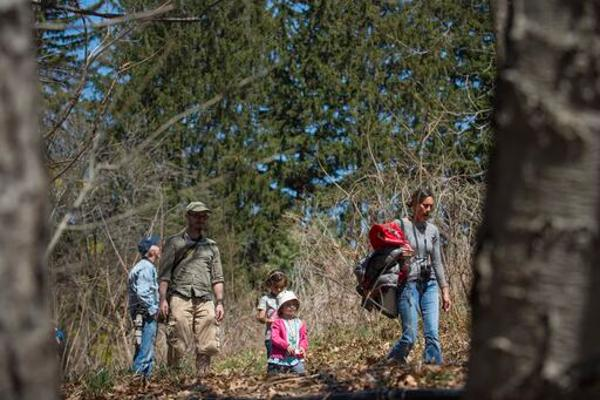 Family Nature Walk at Wave Hill