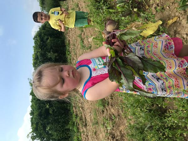 LITTLE FARMER EXPLORERS (AGES 4-10) at Garden of Eve Organic Farm