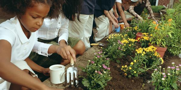 Fertile Minds Gardening Time at Mid-Hudson Children's Museum