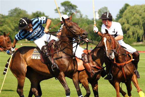 Polo at Bethpage State Park at Bethpage State Park