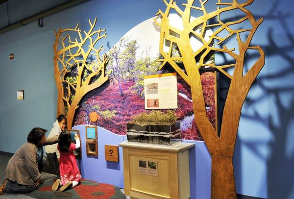 Native Voices: New England Tribal Families Exhibition at Brooklyn Children's Museum