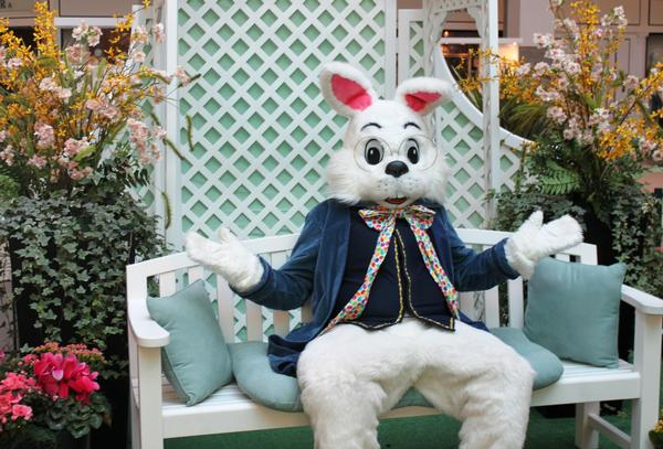 Easter Bunny Photo Time at Roosevelt Field