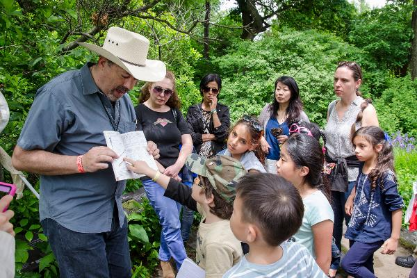 Nature Walks with Bradley Klein: Interesting Insects at Brooklyn Botanic Garden
