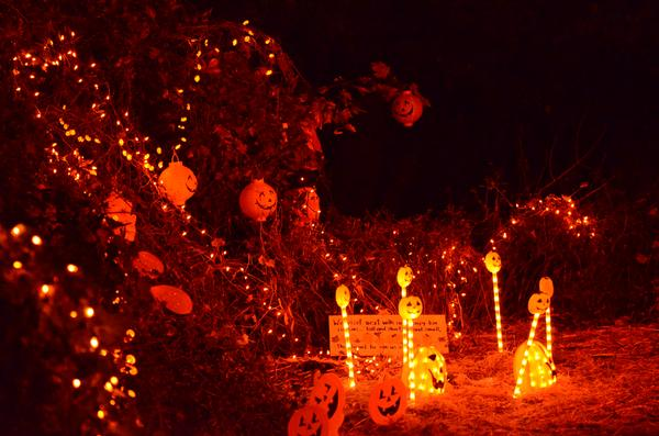 Spooky Fest at Tanglewood Preserve