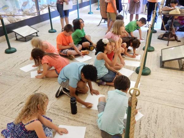 Children's Creative STEAM Workshops at Vanderbilt Museum and Planetarium
