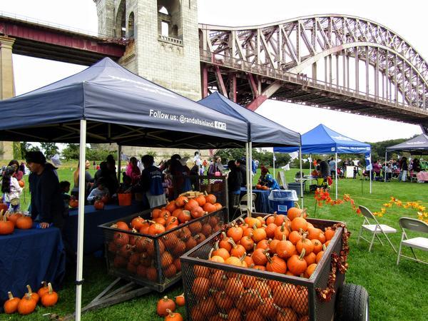 Harvest Festival at Randall's Island Park