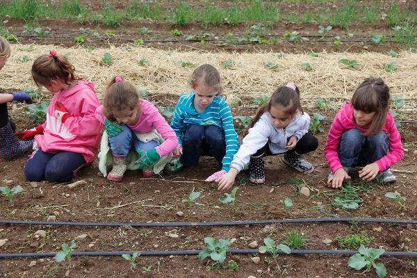 Junior Farmers' Camp - OPEN HOUSE at Cropsey Community Farm