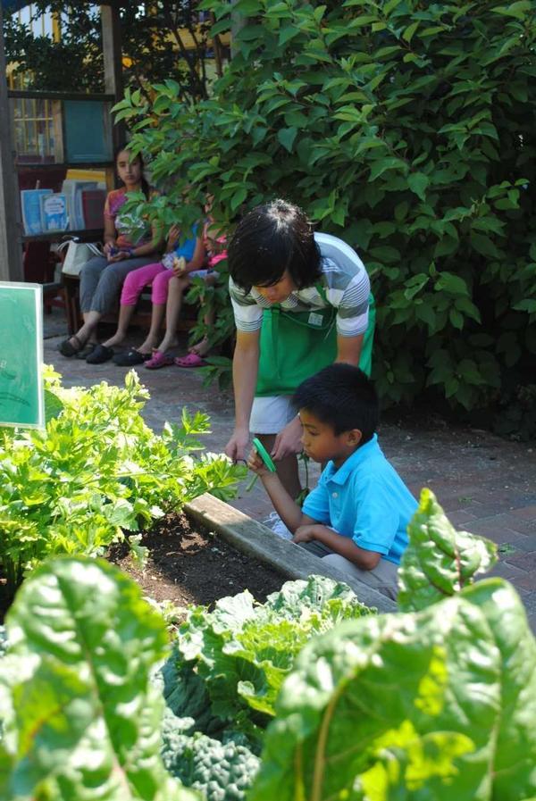 Green Teens at Long Island Children's Museum