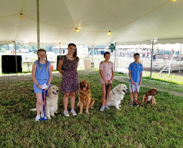 IN PERSON 4-H Youth Dog Showmanship at CCE Rockland Education Center