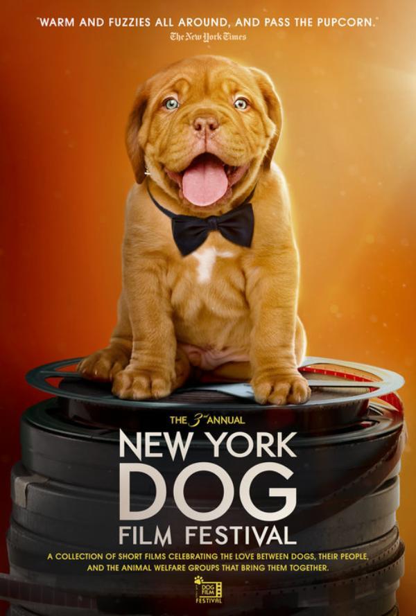 New York Dog Film Festival at Cinema Arts Centre