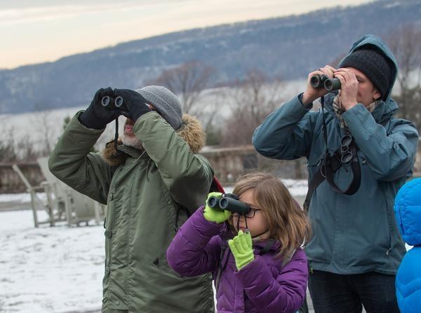 Winter Birding at Wave Hill