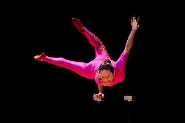 Chinese Acrobatics with Li Liu at Westhampton Free Library