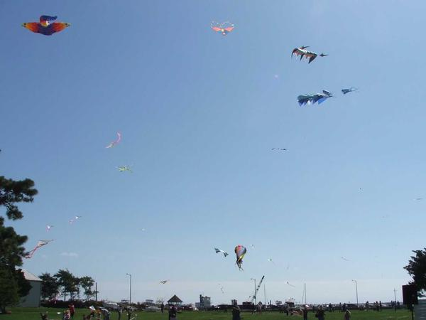 Go-Fly-A-Kite-Day at Long Island Maritime Museum