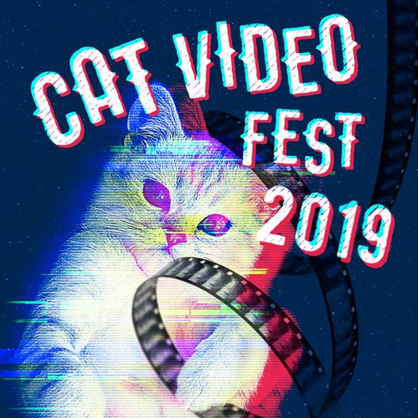 CatVideoFest at Cinema Arts Centre