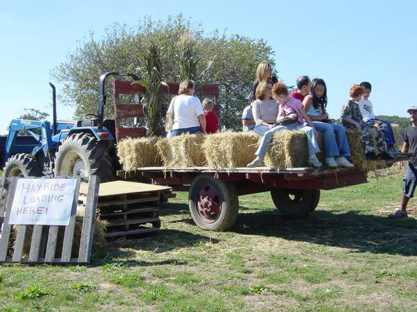 Strawberry Festival at Garden of Eve Farm