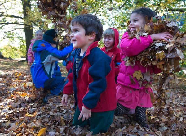 Family Art Project: Natural Weavings at Wave Hill