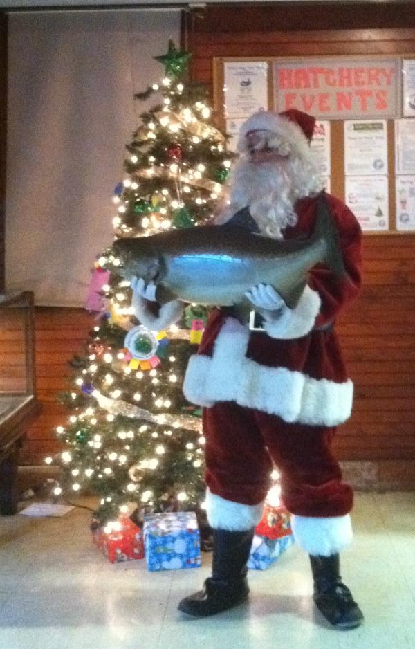 Tree Lighting Ceremony at Cold Spring Harbor Fish Hatchery & Aquarium