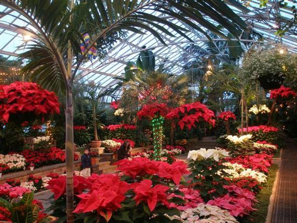 Paradise Garden Festival at Planting Fields Arboretum