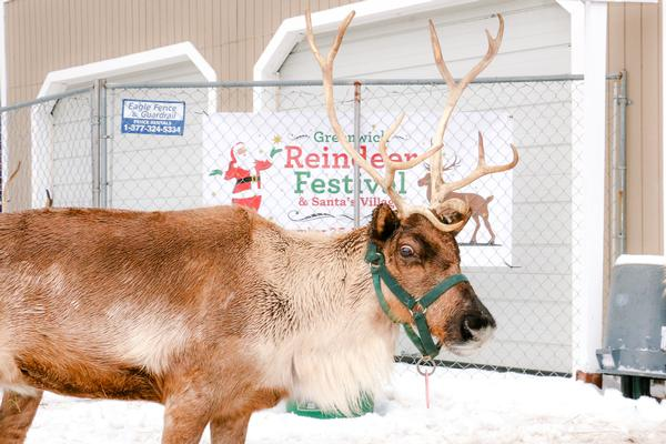 10th Annual Greenwich Reindeer Festival & Santa's Village at Sam Bridge Nursery & Greenhouses