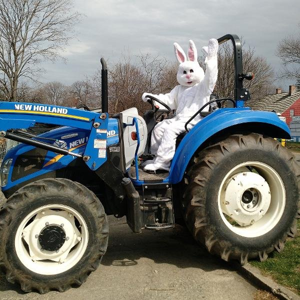 IN PERSON Barnyard Egg Hunt at Queens County Farm Museum