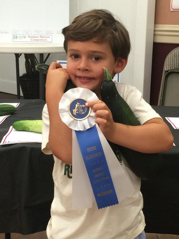 Summer Harvest Competition at Hicks Nurseries