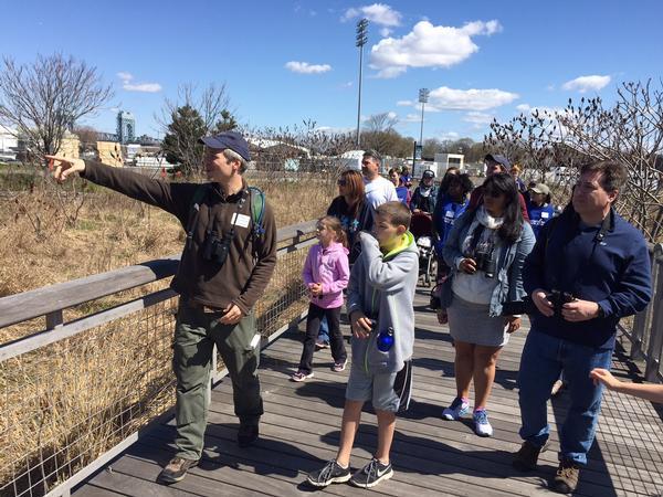 Birding Bonanza at Randall's Island Park