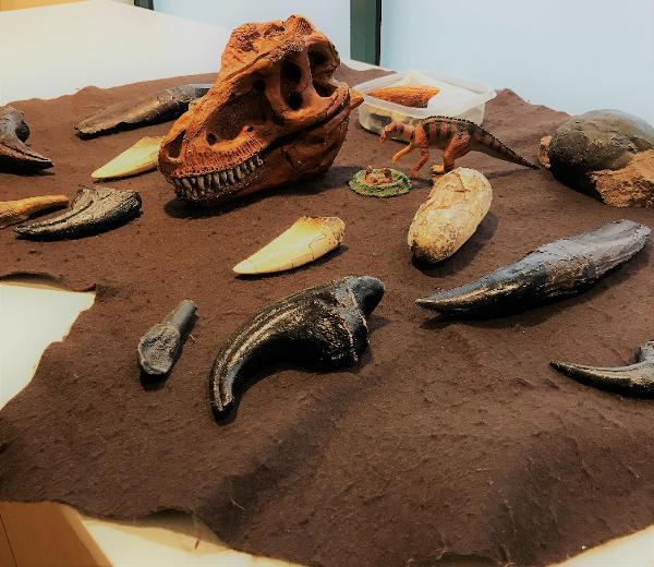 Future Scientist Workshop: Junior Dino Detectives at Long Island Science Center