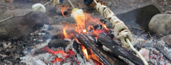 Primitive Living Skills for Children: Cookout: Open Fire Cooking and Techniques for Cooking Outdoors at The Nature Place Day Camp