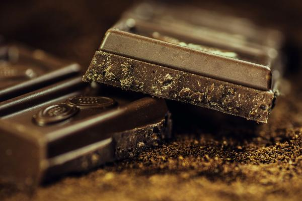 Chocolate! A Hudson Valley History at New City Library
