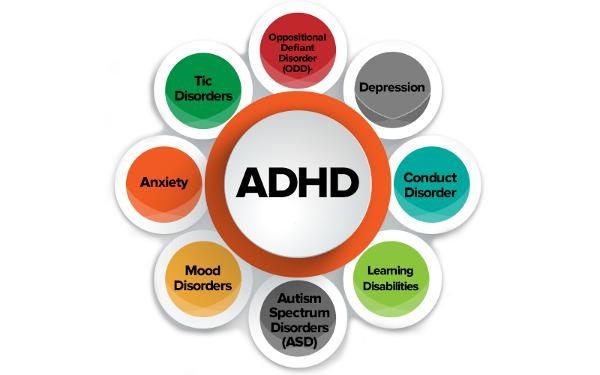 ADHD: Not Just an Academic Issue at New City Library